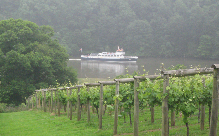 Always a Pleasure to Visit Sharpham - blog post on Wine Cellar Door