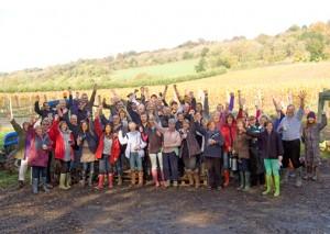 the harvest at albury organic vineyard