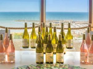Lyme-Bay-English-Wines-in-Lyme-Regis