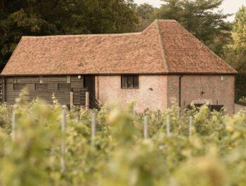 Oxney Organic Estate, producer of award-winning English Wines
