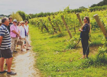 Polgoon Vineyard & Orchard