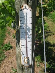 IMG_6758 Kenton Thermometer