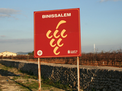 Mallorca 382 Binnisalem