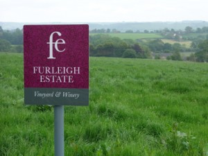 Welcome to Furleigh, English wines from Dorset