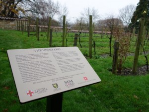 Vineyard information panel