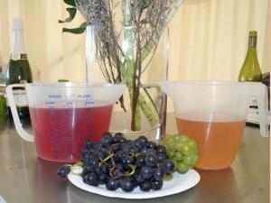 2014-10-11 Bluebell Juice