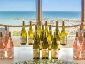 Lyme-Bay-English-Wines-in-Lyme-Regis