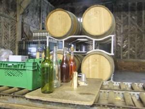 Oak Barrels in the Winery