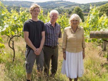 Ancre Hill Welsh vineyard on Wine Cellar Door