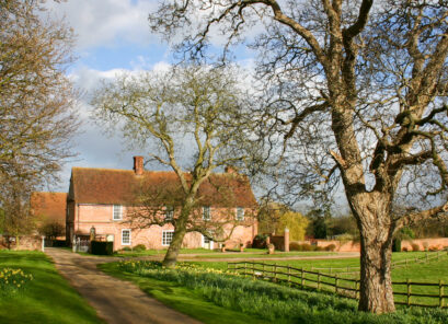 Bardfield Vineyard at Great Lodge
