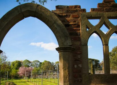 Rothley Wine Estate (Kingfishers Pool Vineyard)