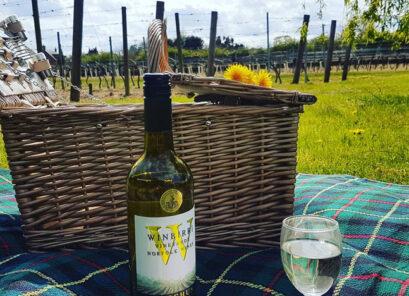 Winbirri Vineyards