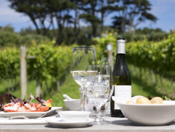 Holy Vale Vineyard in Scilly Isles