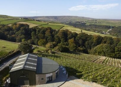 Sheveling Wine Estate at Holmfirth Vineyard