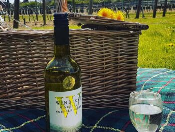 A picnic in the vineyard at Suffolk's Winbirri