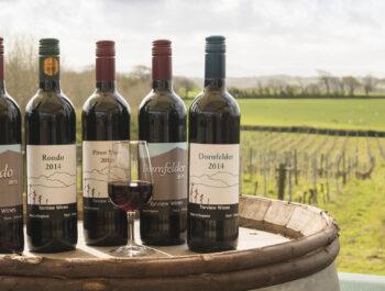 Torview Wines in Devon