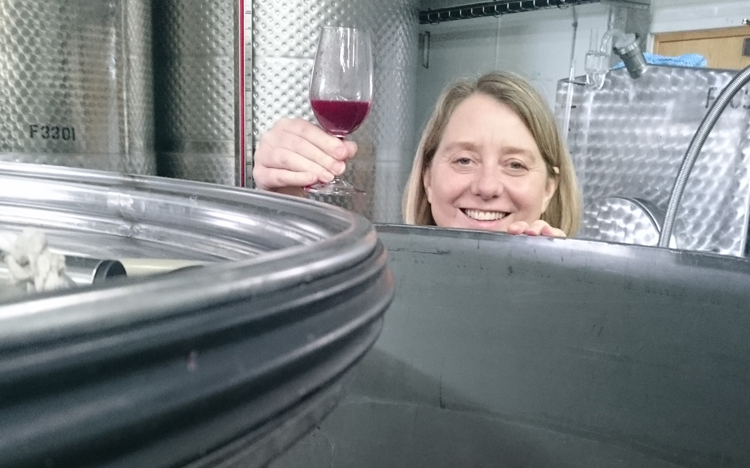 Get involved in vine growing and wine making with Wine Cellar Door