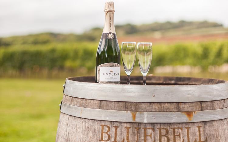 Wine tasting vineyard uk