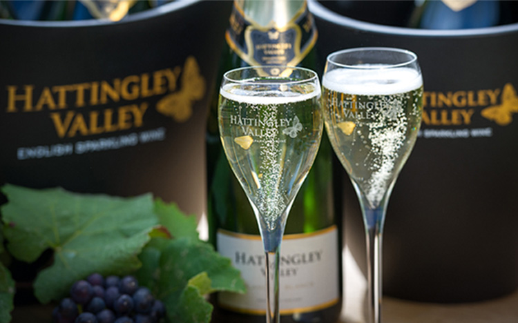 Tour & Tasting at Hattingley Valley