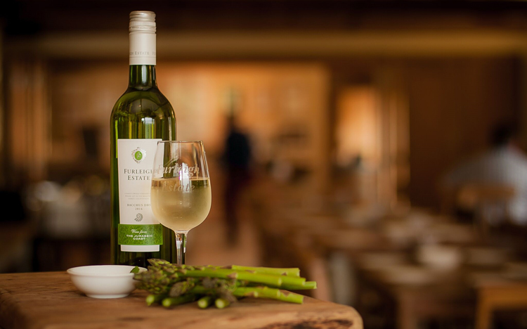 Vineyard Tour with Vegan Wine & Canapés at Furleigh Estate